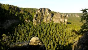 Sunny spring sunrise in a beautiful valley of Saxony Switzerland park. Sandstone rocks. Increased from green pine forest, gentle wind is shaking with leaves stock footage