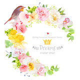 Sunny spring vector design round frame with robin bird. Sunny spring vector design round frame with white peony, yellow daffodils, pink orchid, camellia, green vector illustration