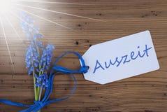 Sunny Srping Grape Hyacinth, etiqueta, tempo ocioso da máquina de meios de Auszeit Fotografia de Stock Royalty Free