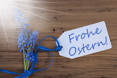 Sunny Srping Grape Hyacinth, Label, Frohe Ostern Means Happy Easter Royalty Free Stock Photography