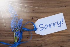 Sunny Srping Grape Hyacinth, Label, Sorry Royalty Free Stock Photo
