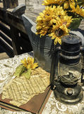 Sunny Still Life with Lantern and Sunflowers Stock Image