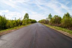 Sunny Straight Redwood Highway Fotografering för Bildbyråer