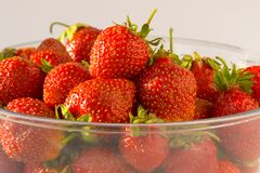 Sunny Strawberries. In Transparent Bowl Royalty Free Stock Photo