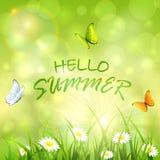 Sunny summer background Royalty Free Stock Image