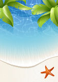 Palm leaves over water Royalty Free Stock Photo