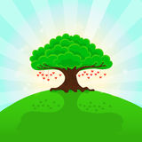 Sunny summer background. Hearts on the tree. Royalty Free Stock Photos