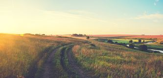 Sunny summer panoramic landscape with ground country road passing through the golden wheat fields and green meadows stock image