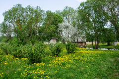 Sunny summer countryside scene Stock Photo