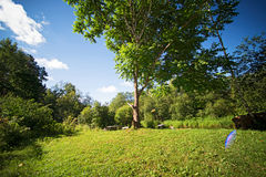 Sunny summer countryside. With sunlight flare Royalty Free Stock Images
