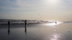 Sunny summer day on beach with walking people, running dogs and big waves. Sunny summer day on sandy beach with silhouettes of walking people, running dogs and stock video
