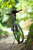 On a sunny summer day, biking. Royalty Free Stock Images
