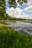 Summer Day in the Wetlands. A sunny summer day in Nygren Wetlands near Rockton, Illinois royalty free stock photos