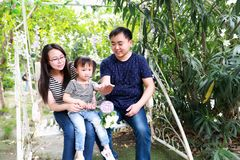 Happy family parental activity mother father daughter hand in hand play and have fun outdoor in summer park child parent love girl. In sunny summer day, partents stock image
