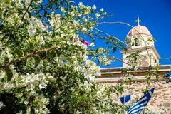 Wonderful white flowers in close proximity. Sunny summer day, wonderful white flowers in close proximity, blue flags on the right side and back of the building Royalty Free Stock Photo