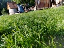 Sunny Summer Days Imágenes de archivo libres de regalías