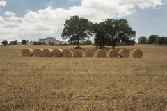 Sunny Summer Days In Puglia sydliga Italien Arkivfoton