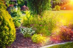 Sunny Summer Garden fotografía de archivo libre de regalías