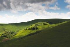 Sunny Summer Landscape con la colina y el prado con los árboles foto de archivo
