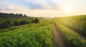 Sunny summer landscape with ground country road passing through the fields,green hills and pastures at sunrise. stock photos