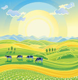 Sunny summer landscape. Sunny summer landscape and herd of cows on the meadow. Vector illustration Royalty Free Stock Images
