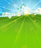 Sunny summer morning. Background with space for text Stock Images