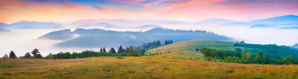 Sunny summer morning in the foggy Carpathian mountains Royalty Free Stock Images