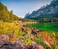 Sunny summer morning on the Gosau Lake Vorderer Gosausee with. View of Hoher Dachstein and Gosau glacier. Colorful outdoor scene in Upper Austrian Alps Stock Photos