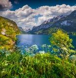Sunny summer morning on the Gosau Lake Royalty Free Stock Image