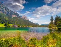 Sunny summer morning on the Hintersee lake Stock Images