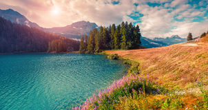 Sunny summer morning on the Hintersee lake Stock Image