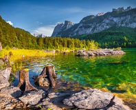 Sunny summer morning on the Vorderer Gosausee lake in the Austri Stock Photography