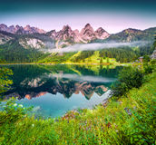Sunny summer morning on the Vorderer Gosausee lake. In the Austrian Alps. Austria, Europe Royalty Free Stock Photography