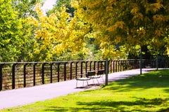 Sunny summer park Royalty Free Stock Photos