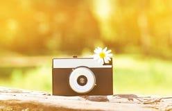 Sunny summer photo retro camera. And flower royalty free stock photos