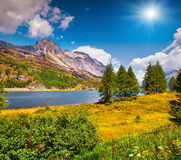 Sunny summer scene on the Silsersee lake Stock Photos