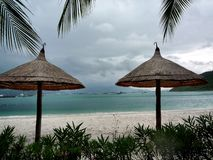 Tropical beach with chairs and umbrellas royalty free stock photography