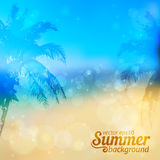 Sunny summer vector backdrop with palms. Sunny summer vector backdrop with palm silhouettes and sample text Stock Photo