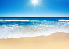 Sunny Surf Royalty Free Stock Photography