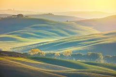 Sunny Surrise Landscape - campos ondulados na manhã fotografia de stock
