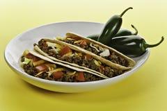Sunny taco Stock Image