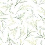 Sunny tea leafs. Hand-painted seamless pattern vector illustration