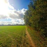 Sunny Trail Fotografia Stock Libera da Diritti