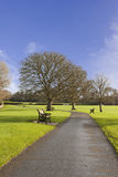 Sunny Tranquil Garden Walkway immagini stock