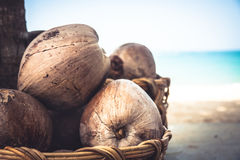Sunny tropical beach with coconuts and blurred beach background. Coconuts and blurred beach background Stock Image