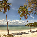 Sunny tropical beach Royalty Free Stock Photos