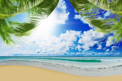 Sunny tropical beach on the island. Beautiful sunny tropical beach on the island paradise in the middle of the sea Stock Photos