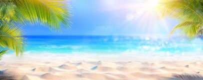 Sunny Tropical Beach With Palm sidor arkivfoton