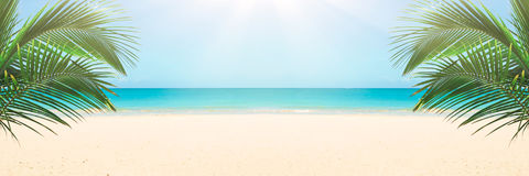 Sunny tropical beach Royalty Free Stock Image