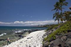 Sunny tropical coastline Stock Image